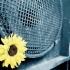 speaker_flower1